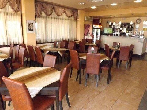 Salon restaurant parter Steaua Nordului Craiova