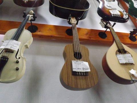 Instrumente muzicale nunti Craiova