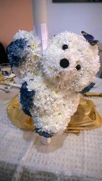 Ursuleti florali botez Craiova