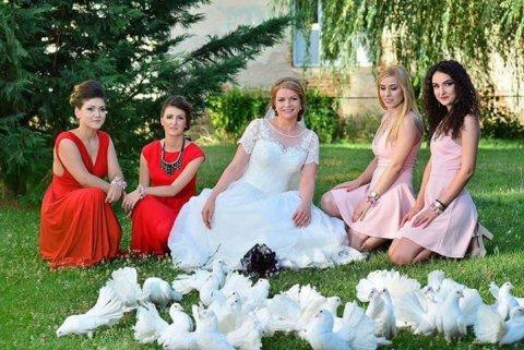 Mireasa porumbei albi domnisoare onoare