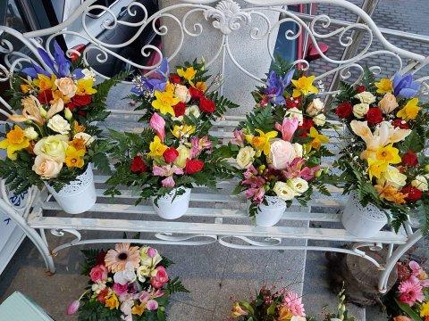 Bancuta florilor Craiova